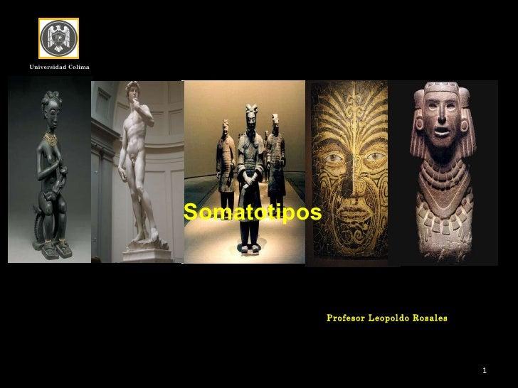 Universidad Colima Profesor Leopoldo Rosales Somatotipos