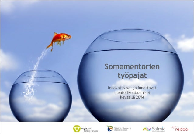 Somementorit2014