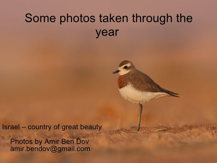 Some photos taken through the year  <ul><li>Israel – country of great beauty Photos by Amir Ben Dov [email_address] </li><...