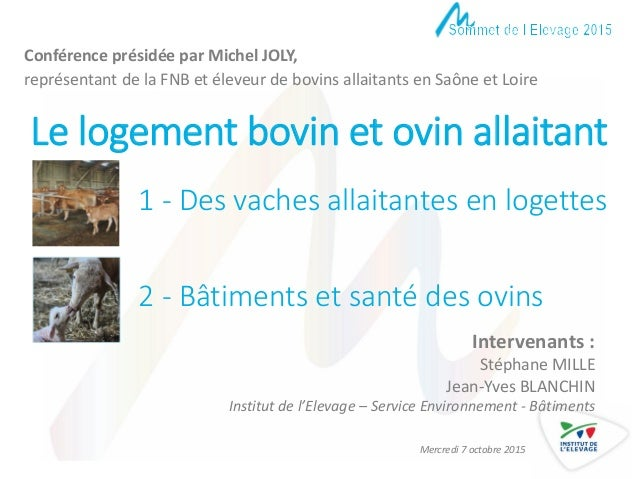 Le logement bovin et ovin allaitant Intervenants : Stéphane MILLE Jean-Yves BLANCHIN Institut de l'Elevage – Service Envir...