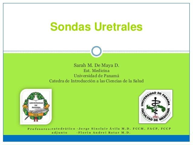 Sondas Uretrales Sarah M. De Maya D. Est. Medicina Universidad de Panamá Catedra de Introducción a las Ciencias de la Salu...