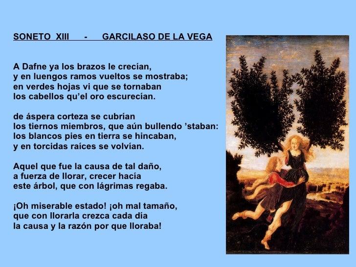SONETO  XIII  -  GARCILASO DE LA VEGA A Dafne ya los brazos le crecían,  y en luengos ramos vueltos se mostraba;  en verde...