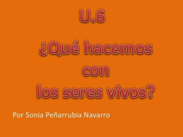 Por Sonia Peñarrubia Navarro.