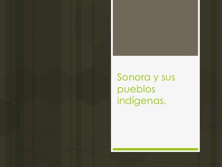 Sonora y sus_pueblos_ind_genas (1)