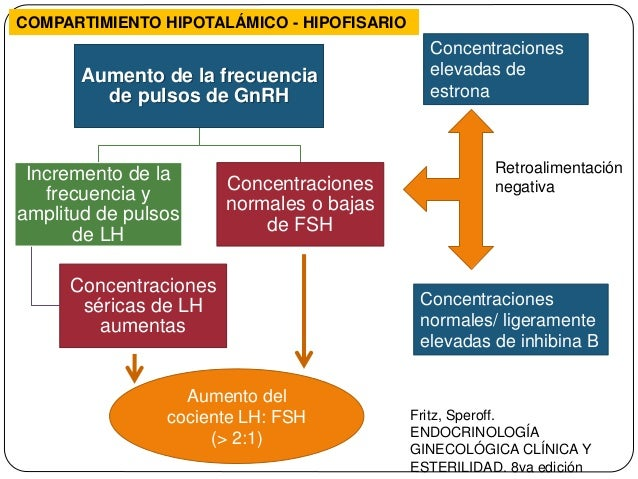 esteroidogenesis speroff