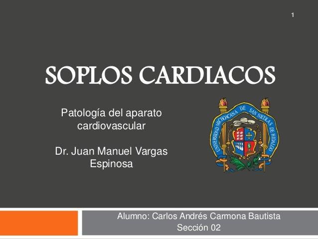 SOPLOS CARDIACOS Alumno: Carlos Andrés Carmona Bautista Sección 02 1 Patología del aparato cardiovascular Dr. Juan Manuel ...