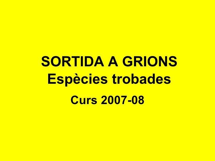 Sortida A Grions 2