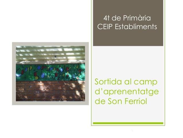 4t de Primària CEIP Establiments  Sortida al camp d'aprenentatge de Son Ferriol