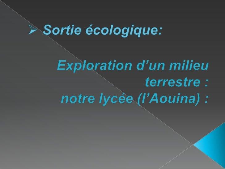 <ul><li> Sortie écologique:</li></ul>Exploration d'un milieu terrestre: <br />notre lycée (l'Aouina) :<br />