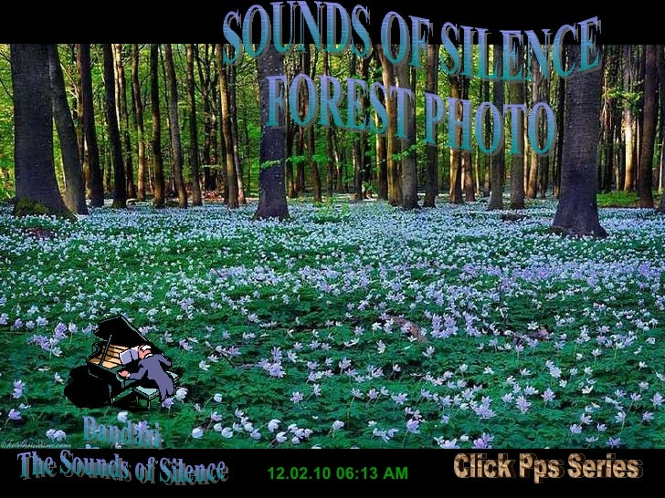 12.02.10   06:13 AM Bandari The Sounds of Silence SOUNDS OF SILENCE FOREST PHOTO Click Pps Series