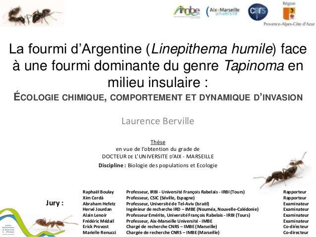 La fourmi d'Argentine (Linepithema humile) face à une fourmi dominante du genre Tapinoma en milieu insulaire : ÉCOLOGIE CH...