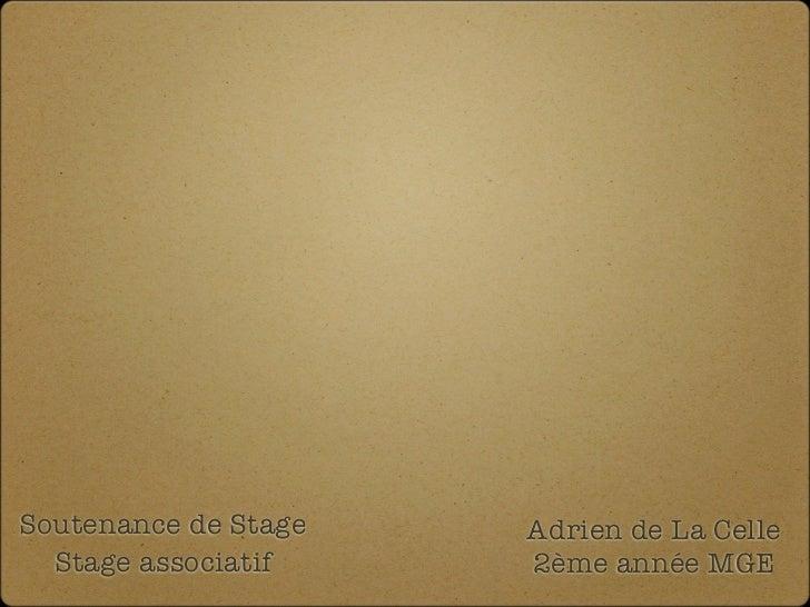 Soutenance de Stage   Adrien de La Celle  Stage associatif    2ème année MGE