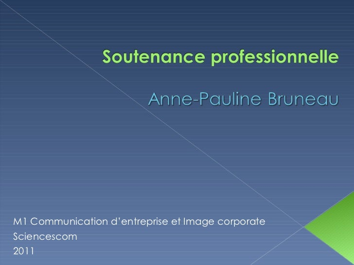 M1 Communication d'entreprise et Image corporate Sciencescom  2011