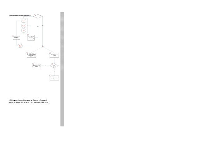 South Africa mineral rights process flowcharts