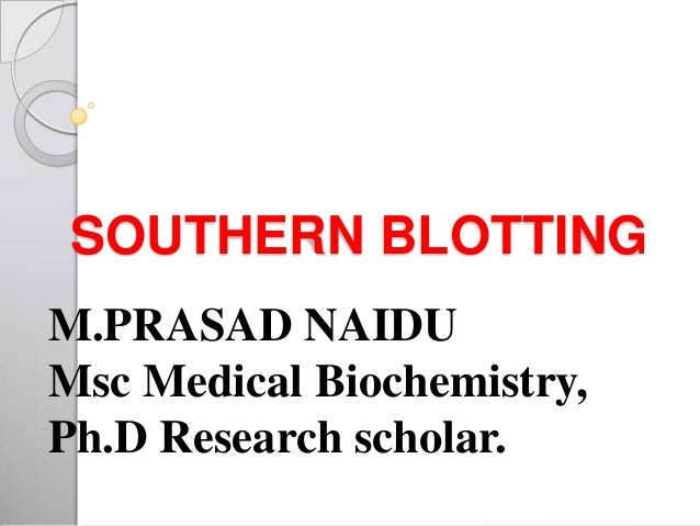 SOUTHERN BLOTTING M.PRASAD NAIDU Msc Medical Biochemistry, Ph.D Research scholar.