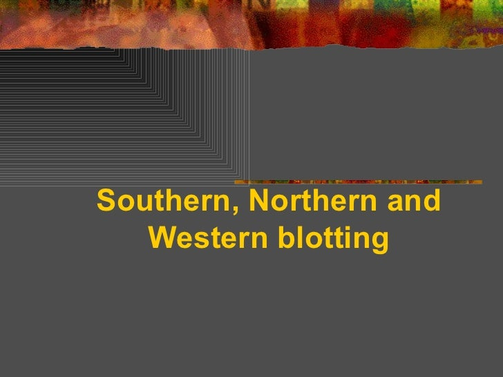 Southern northern and western blotting