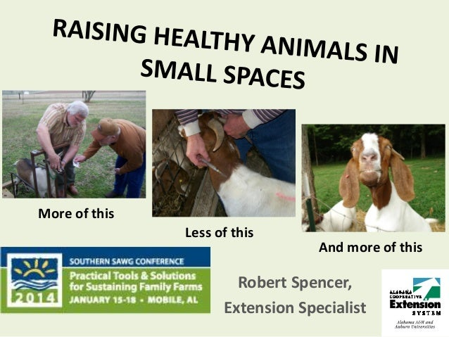 Southern sawg healthy animals small spaces