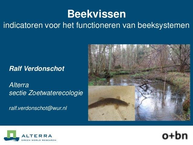 Beekvissen; indicatoren voor het functioneren van beeksystemen