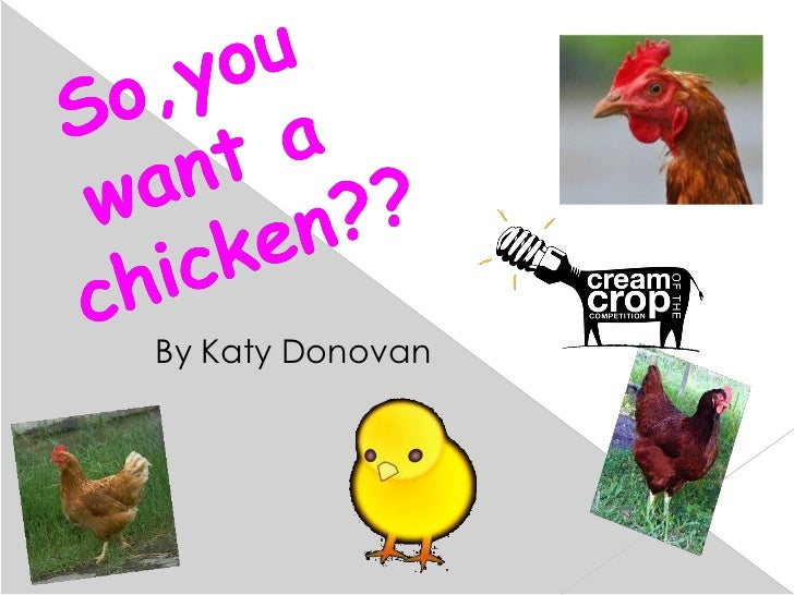 So you want a chicken? By Katy Donovan