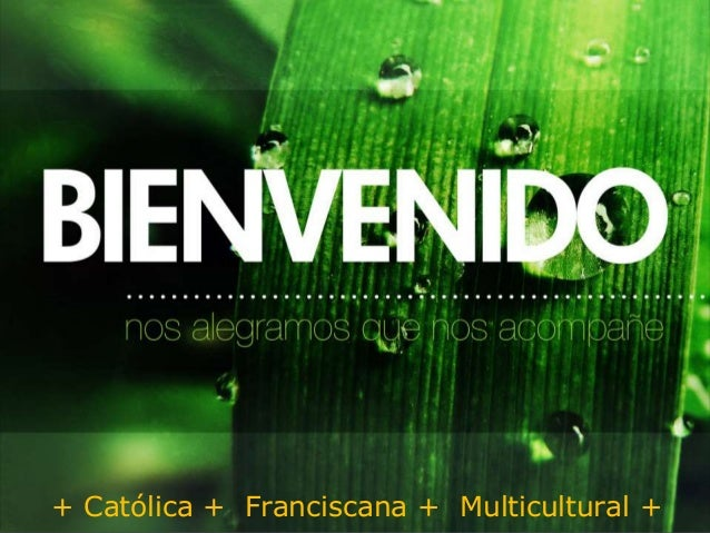 Mission San Luis Rey Parish Faith Community + Católica + Franciscana + Multicultural +