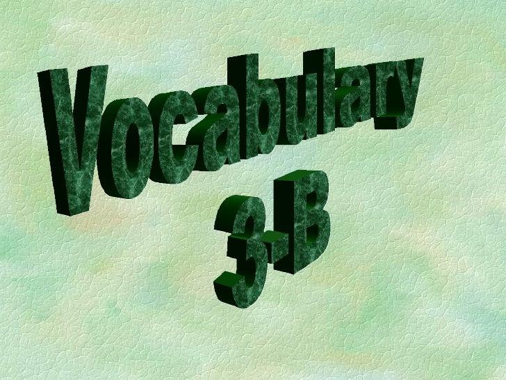 Chapter 3B-Vocabulary