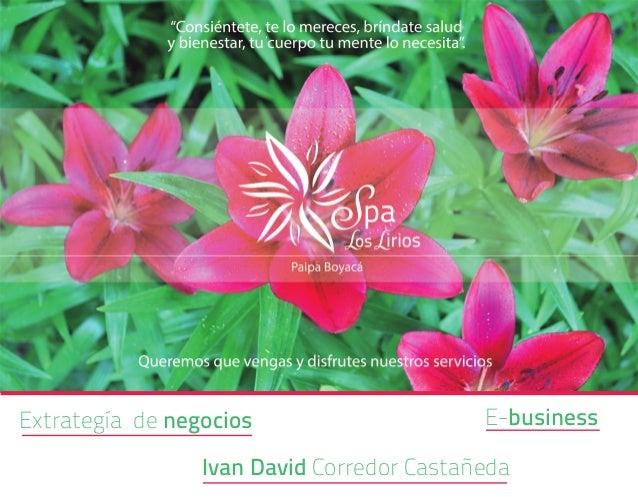 Extrategía de negocios  E-business  Ivan David Corredor Castañeda