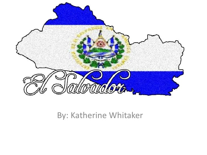 By: Katherine Whitaker<br />
