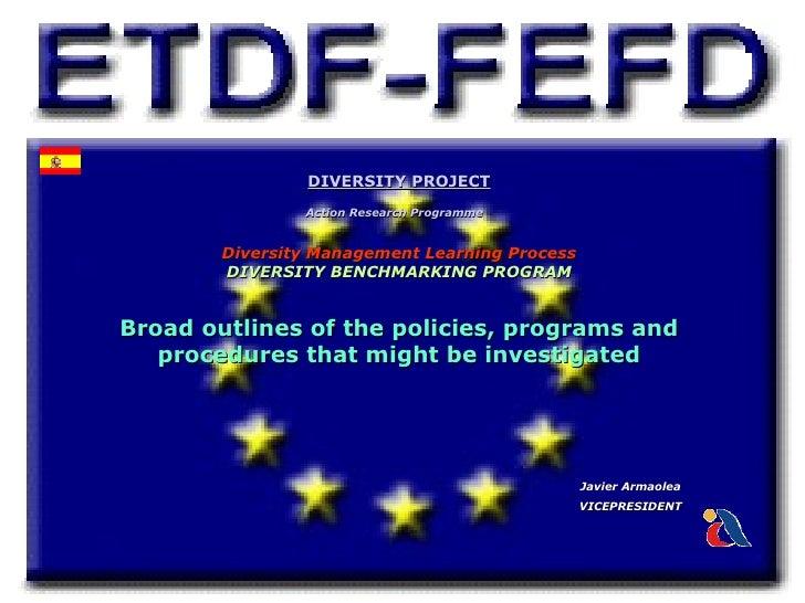 DIVERSITY PROJECT                Action Research Programme        Diversity Management Learning Process        DIVERSITY B...