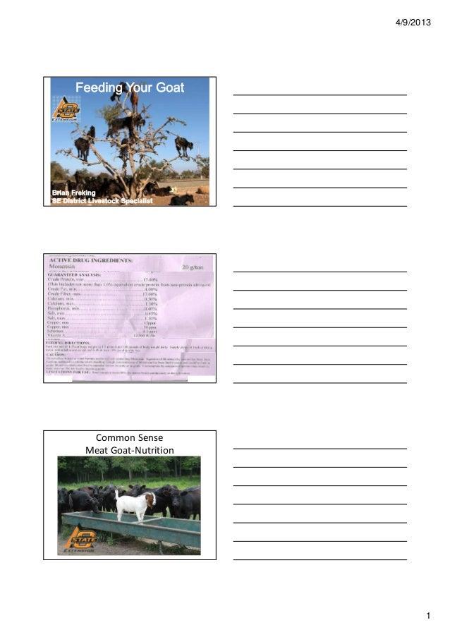 4/9/2013         Feeding Your GoatREADINGFEEDTAGS     Common Sense    Meat Goat-Nutrition                                 ...