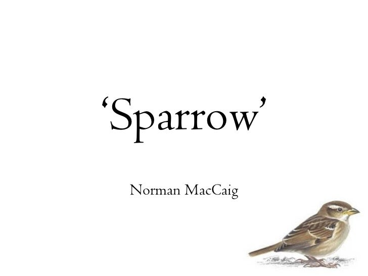 "sparrow by norman maccaig Norman maccaig, ""by the graveyard, luskentyre"" it is difficult to say what it is   saltmarsh sharp-tailed sparrow, meadow lark (just seven notes) short-billed."