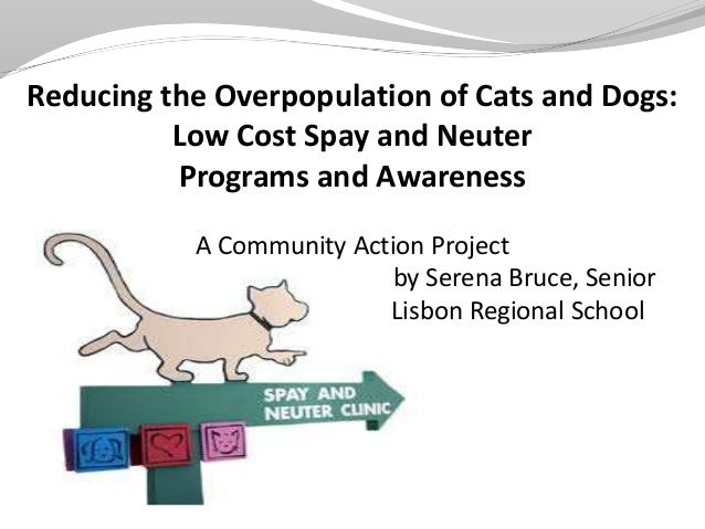Reducing the Overpopulation of Cats and Dogs:          Low Cost Spay and Neuter          Programs and Awareness           ...