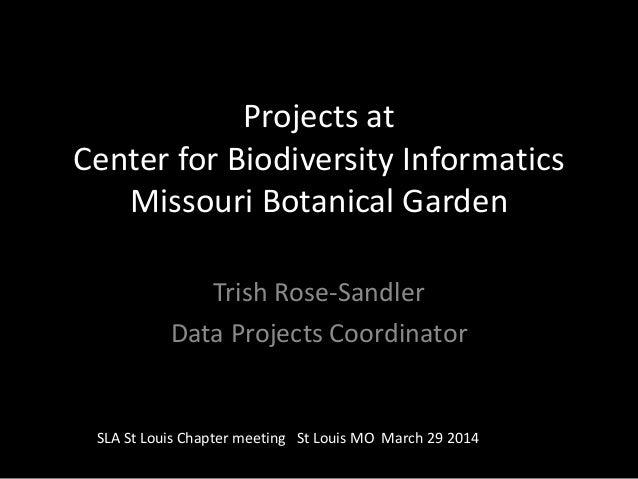 Projects at Center for Biodiversity Informatics Missouri Botanical Garden Trish Rose-Sandler Data Projects Coordinator SLA...