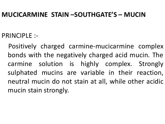 special stains in histopathology pdf