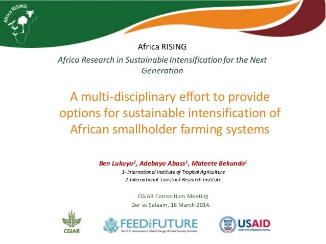 A multi-disciplinary effort to provide options for sustainable intensification of African smallholder farming systems Ben ...