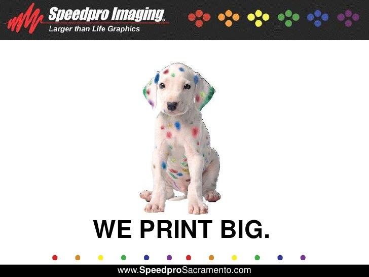 Speedpro Imaging: Who We Are