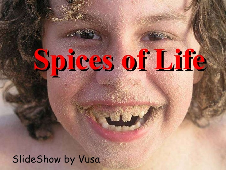 Spices of Life SlideShow by Vusa