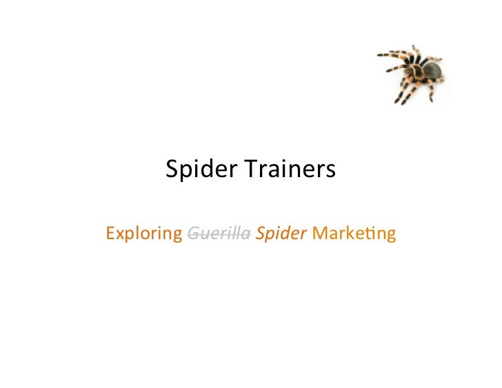 Spider Trainers Exploring Guerilla Spider Marke3ng