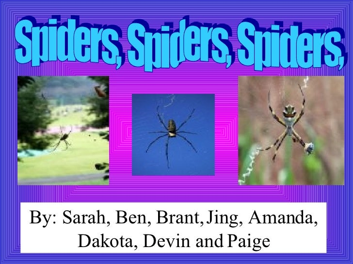 Spiders, Spiders, Spiders, By: Sarah, Ben, Brant,   Jing, Amanda, Dakota, Devin and Paige