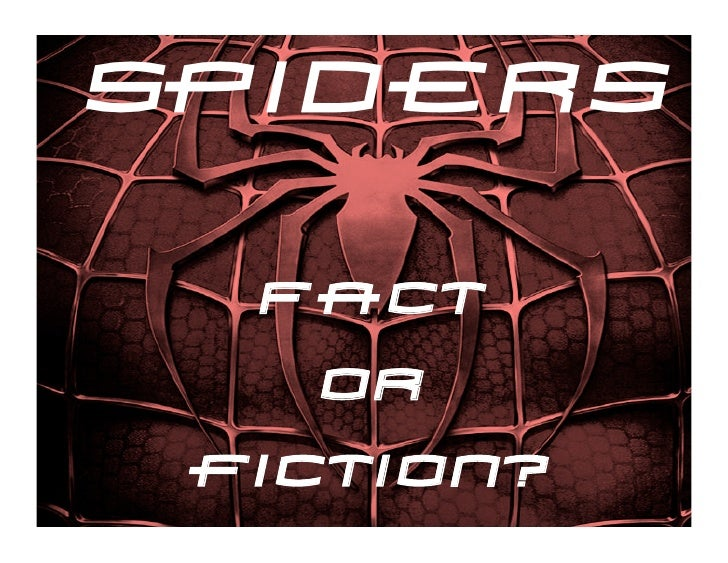 spiders  Fact    Or fiction?