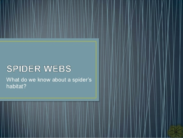 What do we know about a spider'shabitat?