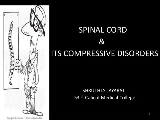 Spinal cord& its lesions,compressive myelopathy