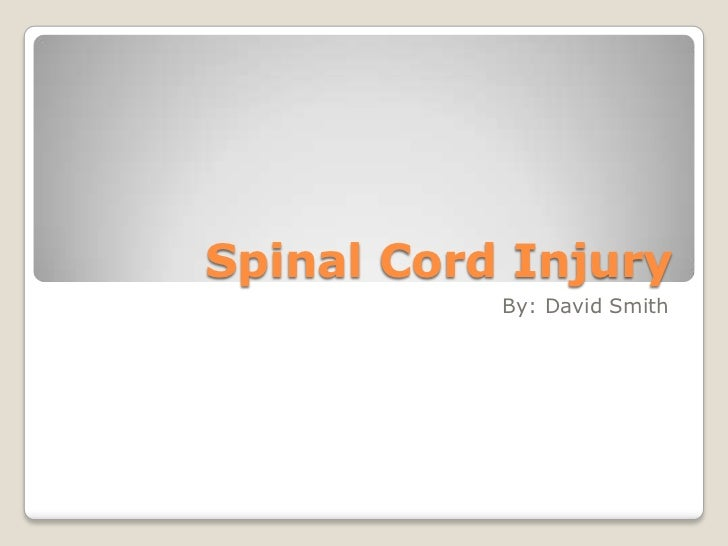 Spinal Cord Injury           By: David Smith