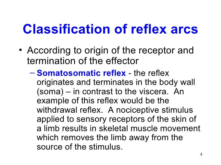 classifications of reflexes Spinal and stretchreflexes a reflex is an involuntary neural response to a specific sensory stimulus that threatens the survival or homeostatic state of an organism.