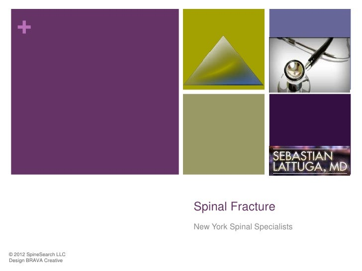 +                         Spinal Fracture                         New York Spinal Specialists© 2012 SpineSearch LLCDesign ...