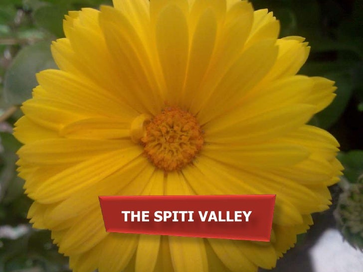 THE SPITI VALLEY<br />