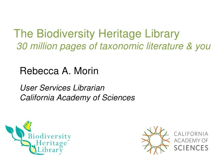 The Biodiversity Heritage Library  30 million pages of taxonomic literature & you Rebecca A. Morin User Services Librarian...