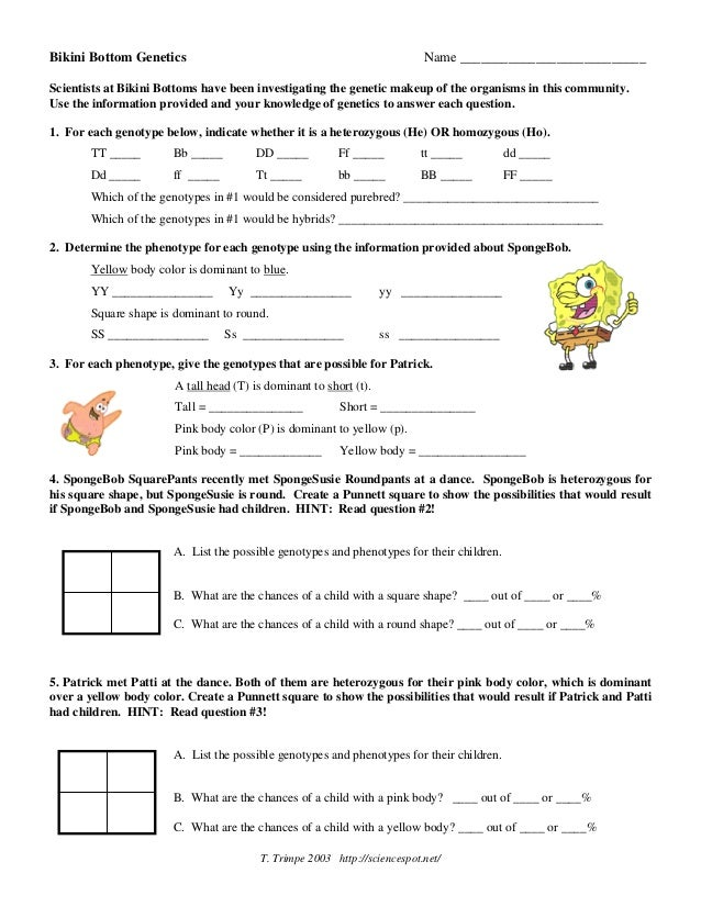 Printables Spongebob Science Worksheet spongebob genetics worksheet laveyla com davezan