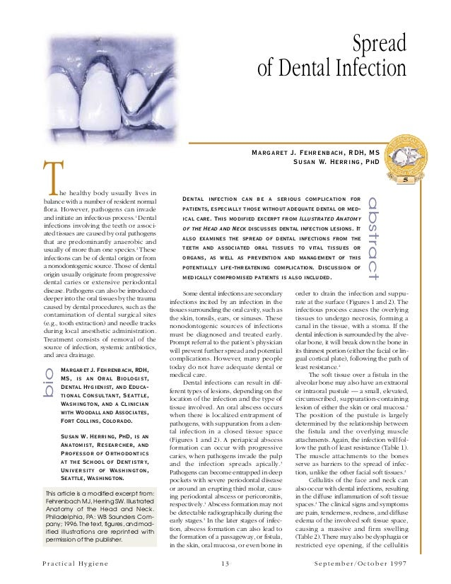 Spread of dental infection pdf
