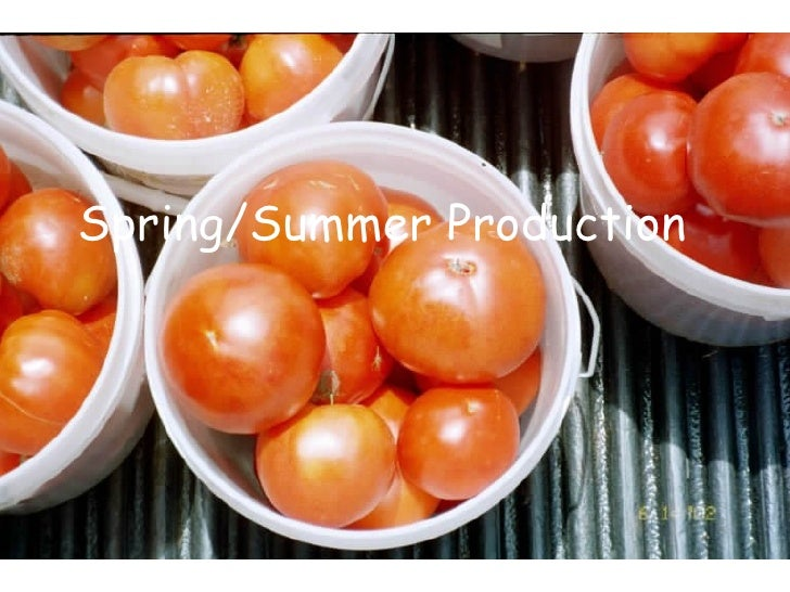Spring Summer Production