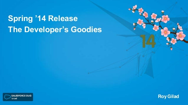 Spring '14 Release The Developer's Goodies  Roy Gilad